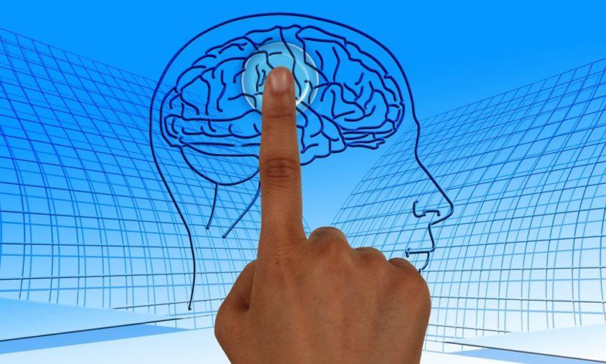 cerebro-mente-corpo2